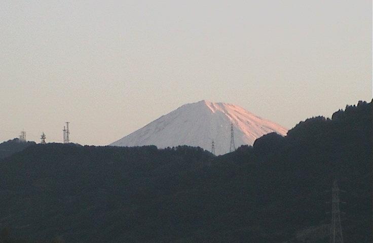 2008_1_3