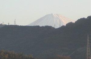 2009_1_1_2